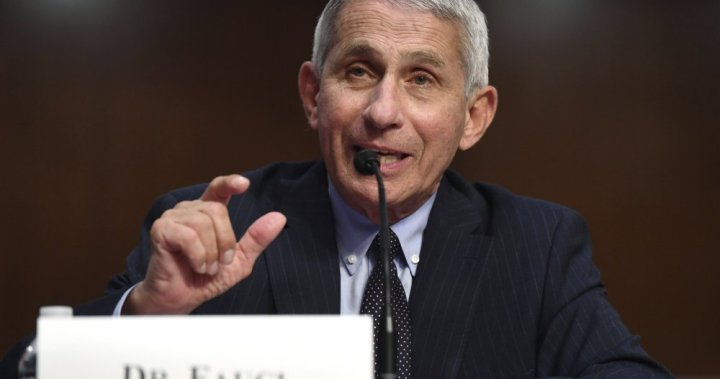 Coronavirus: Fauci, CDC chief raise concerns about full U.S. flights amid COVID-19 - National