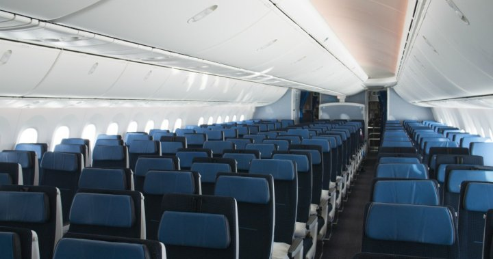 Opening middle seats on airplanes amid coronavirus pandemic risky, experts say - National