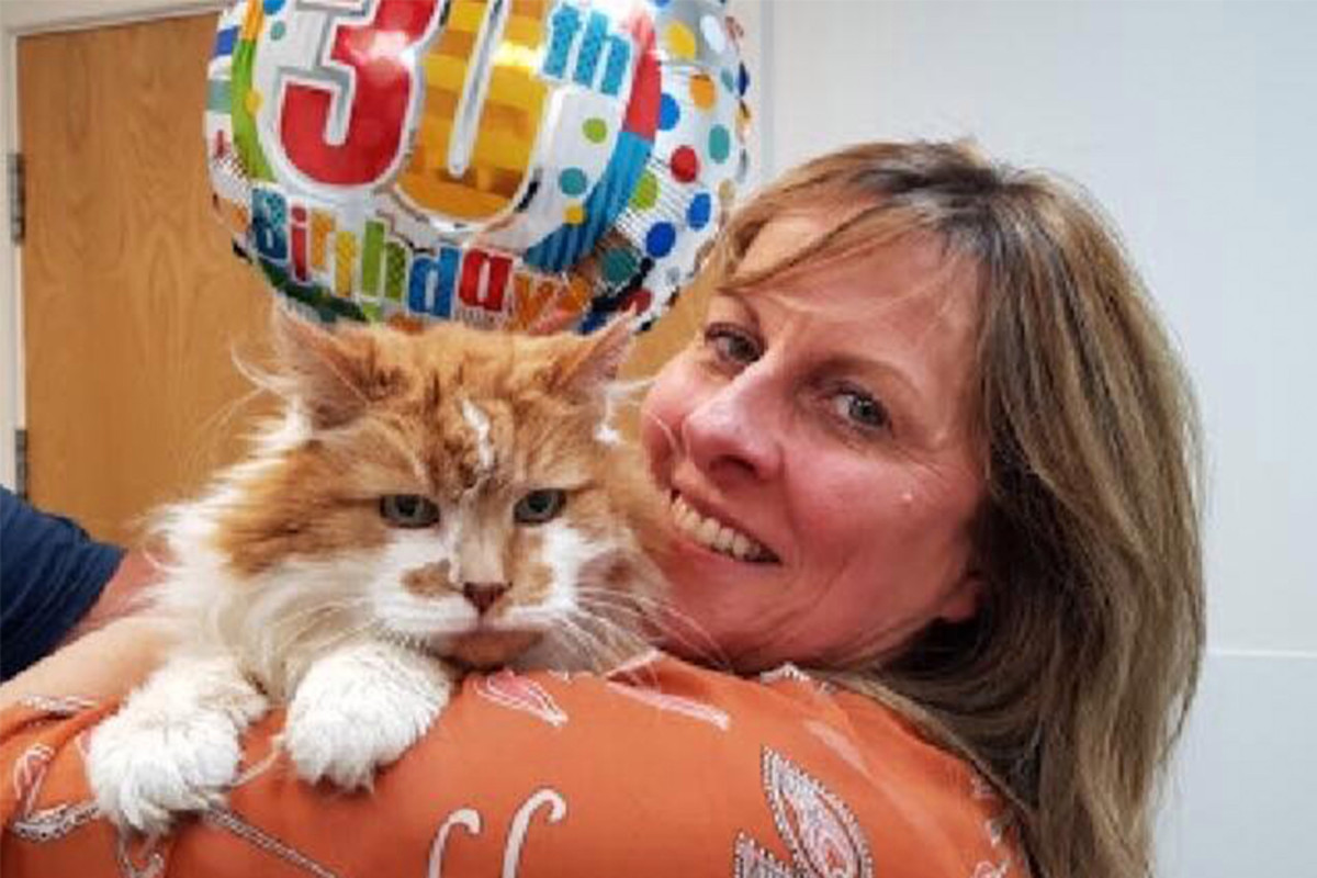 World's oldest cat passes away at 31
