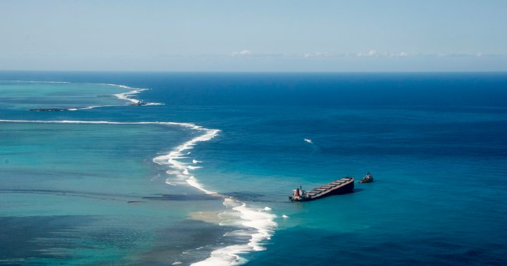Oil urgently pumped from ship grounded near Mauritius after major spill - National