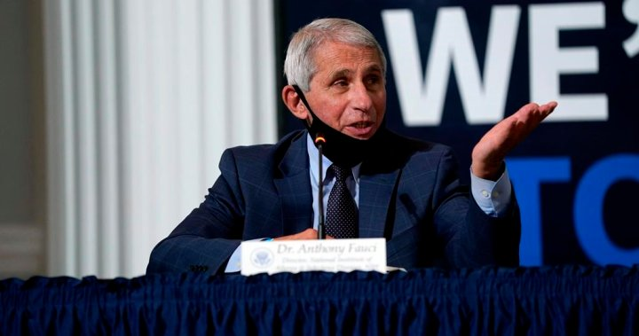 Drugmakers will have tens of millions of COVID-19 vaccine doses by early 2021: Fauci - National