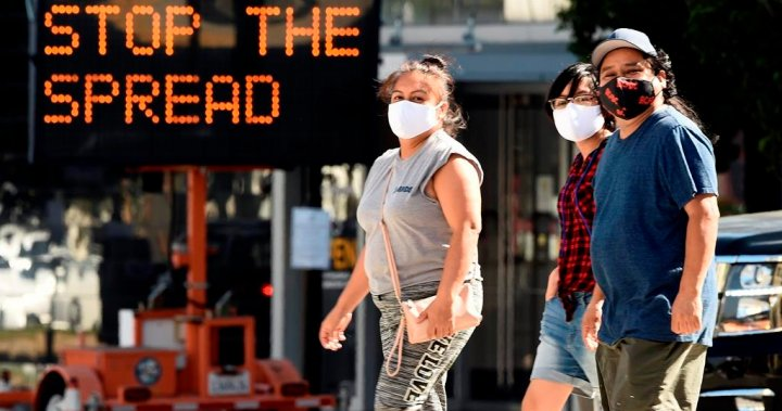 Face masks at home may be needed as U.S. battles coronavirus: task force head - National
