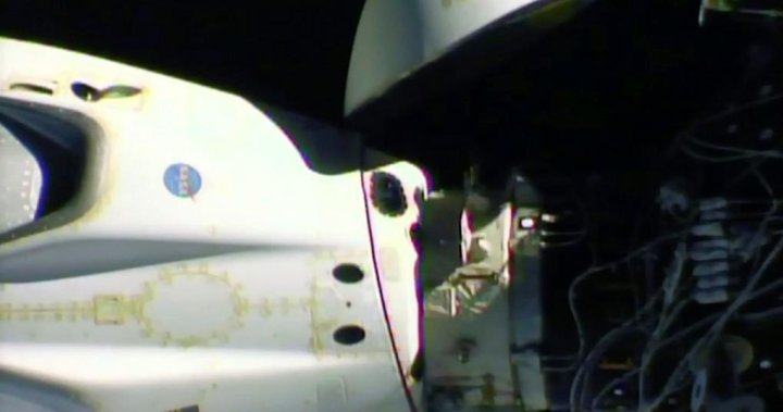 NASA astronauts in SpaceX capsule to complete 1st splashdown in 45 years - National