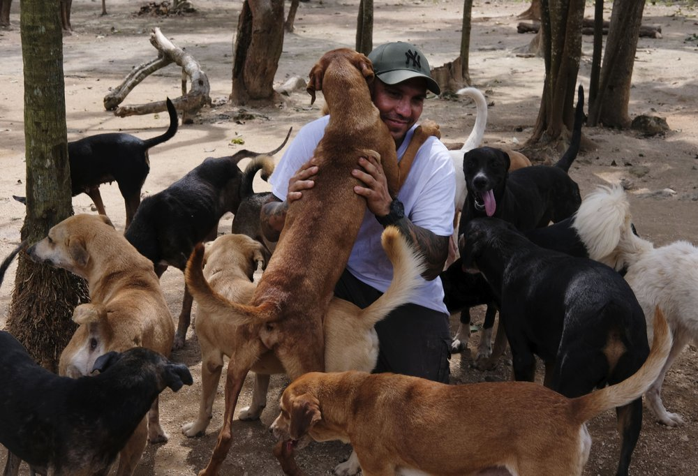 Man shelters 300 dogs from Hurricane Delta in Mexico home