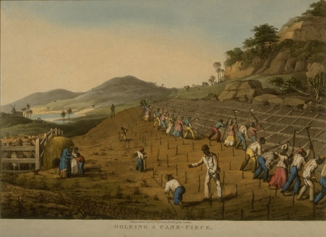 Caribbean News - Free Course On British Slavery In The Caribbean Now Available