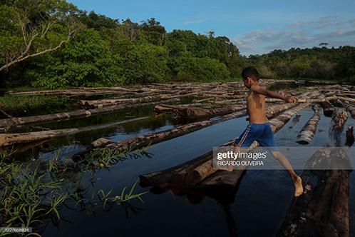Latin America News - Stolen Indigenous Land In Brazil On Sale On Facebook?