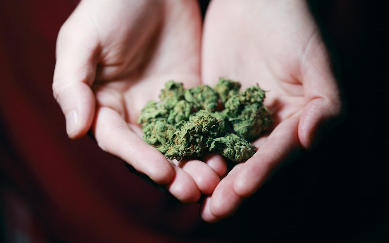 Businesses prepare for the imminent legalization of marijuana in Mexico this month