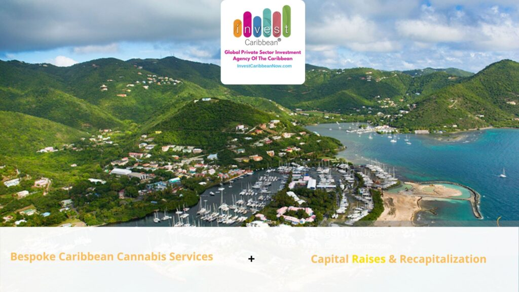 invest-caribbean-services